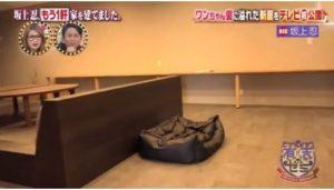 千葉 坂上 の 家 忍 坂上忍の家の場所は木更津市金田で間取りは誰のため?結婚歴があったとは知らなかった!